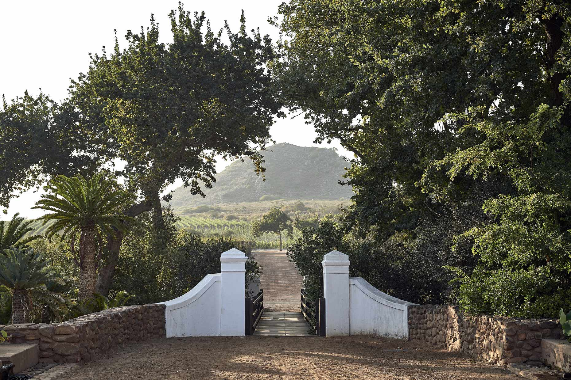 Babylonstoren-Entrance-to-Vineyard