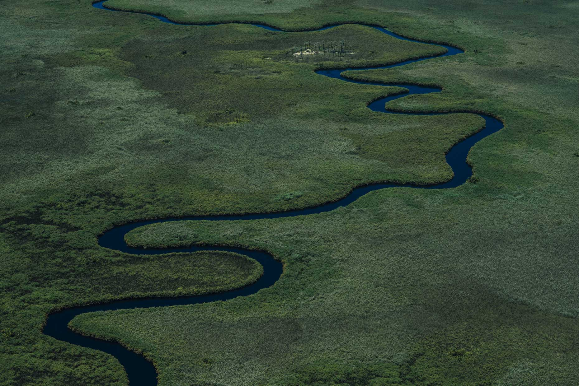Winding organic Okavango Delta river in African Safari