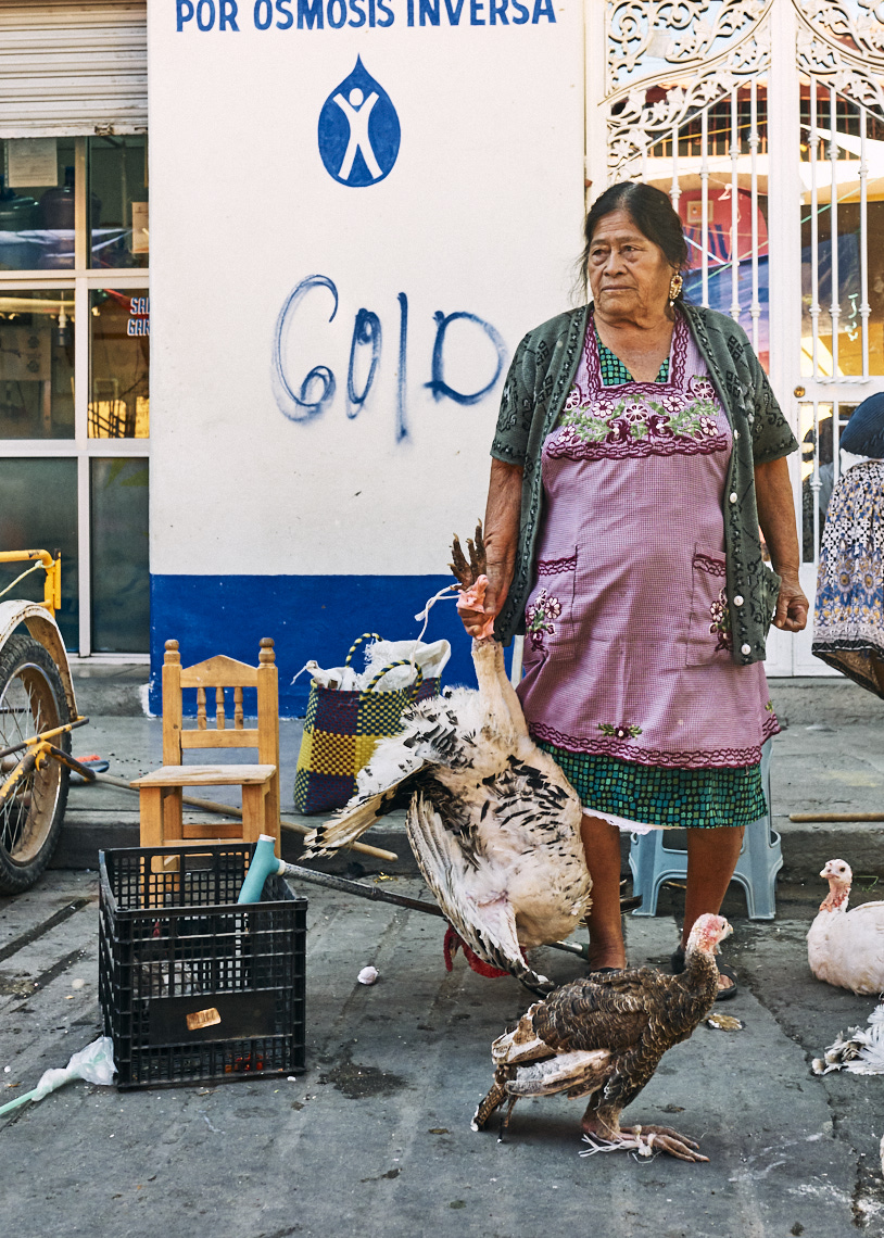 Woman-holding-turkey-for-sale-at-a-local-market
