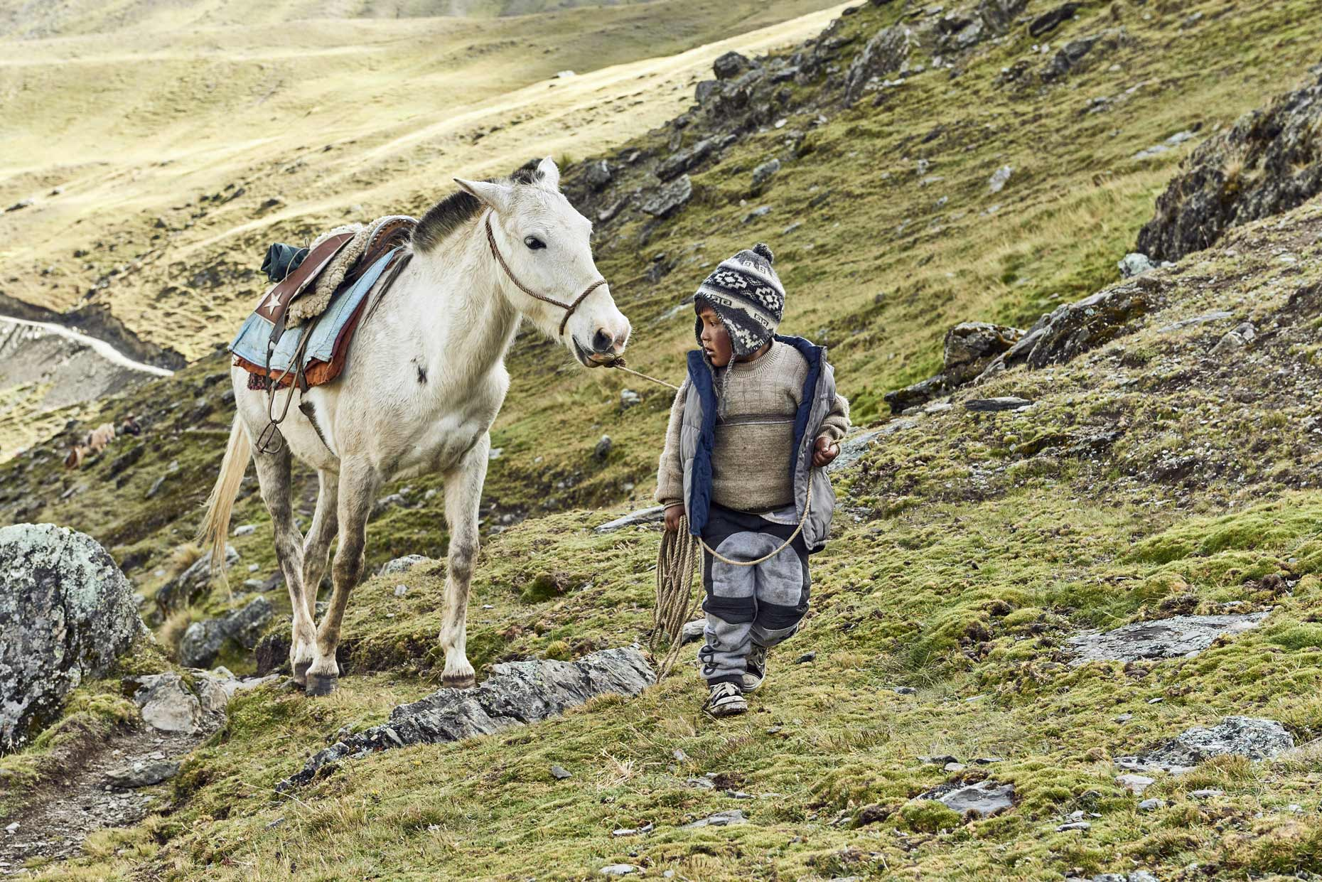 Young-Peruvian-village-boy-guiding-horse-through-Andean-mountains
